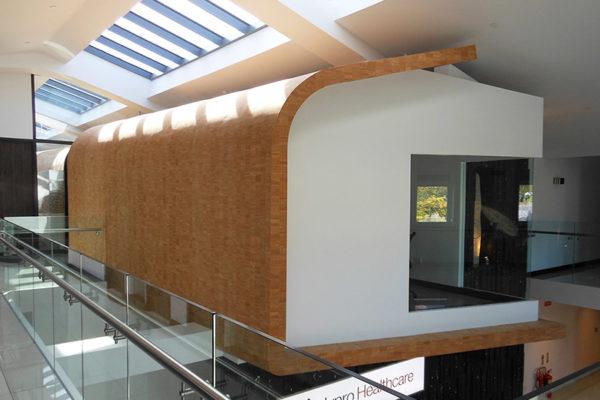 odriscoll lynn architects nypro healthcare bray